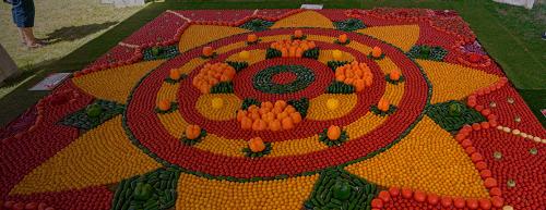 왓츠온(토마토축제)1.png
