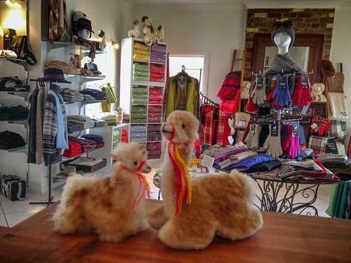 6 Australian Alpaca Centre-2.jpeg