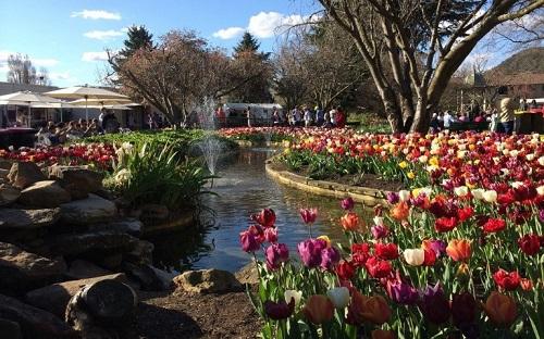 1 The Corbett Gardens-1.jpg