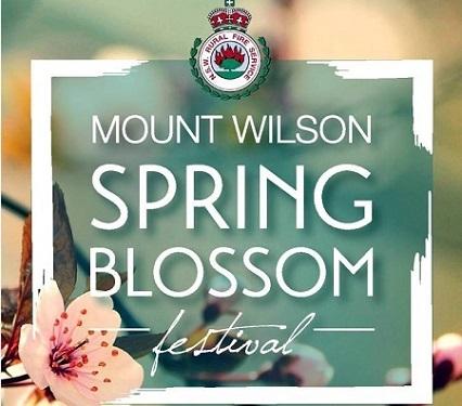 1 Mt Wilson Spring Blossom-1.jpg