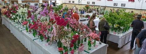 13 Bilpin Flower Show-2.jpg