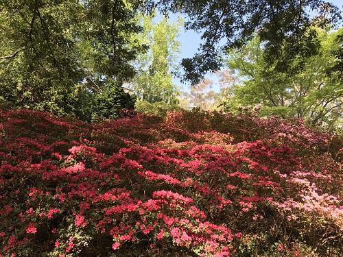 3 Leura Gardens-1.jpg