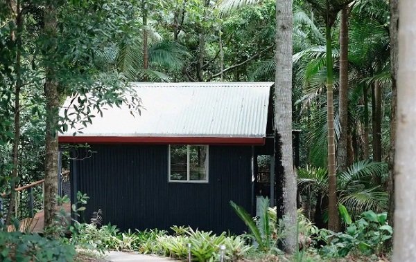 4 Rainforest Creek Cabin 3.jpg