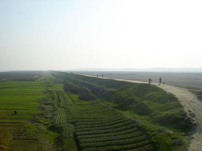 800px-DPRK_rice.jpg