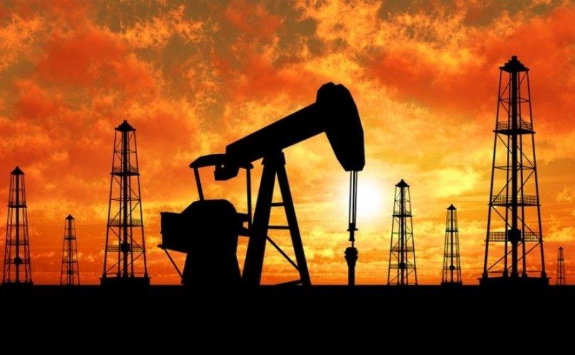 몽골 지질학자들이 79년만에 석유 광맥 발견.jpeg