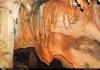 플로리다 유일의 관광 동굴을 아시나요?