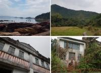 [홍콩] 기자의 눈 - 홍콩의 구석구석 탐방, 半폐가 마을, Lai Chi Wo 荔枝窩