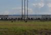 플로리다 농지법 악용하는 기업...금싸라기 땅에 '쥐꼬리' 세금
