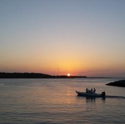 평상심 회복해 가는 플로리다 올랜도의 아침