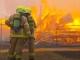 베레지클리안 주총리 NSW 전역에 산불 '비상사태' 선언