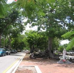 미국 속의 쿠바를 가다