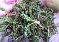한국의 토종 봄나물
