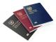 대한민국 여권, 녹색 표지를 남색으로